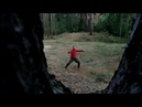 Forest Taichi