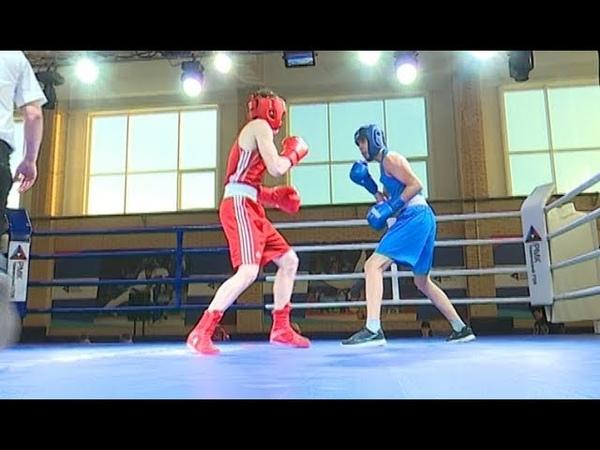 Турнир по боксу в Коркино