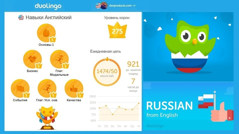 Crown Level 5 complete in Duolingo Russian-English language tree (home video 2018)