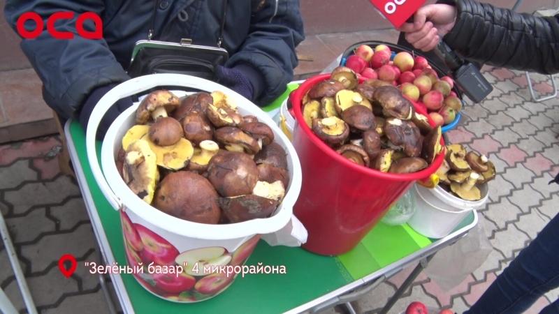 Дикоросы в Ачинске дороже экзотических фруктов?