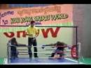 Обезьяний бокс