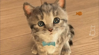 Play Fun Pet Care Little Kitten - My Favorite Cute Cat Cartoon Game for Toddlers