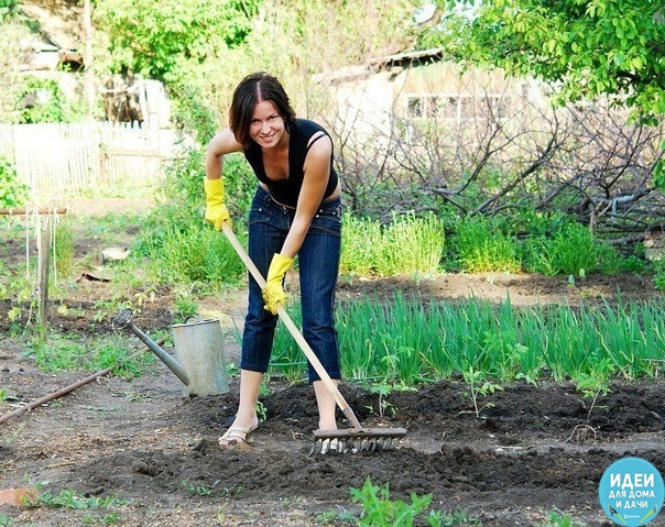Календарь садово-огородных работ. МАРТ - АПРЕЛЬ-МАЙ В марте можно начинать сеять на рассаду белокочанную, цветную капусту, помидоры: капусту белокочанную 10-15 марта; капусту цветную 10-15