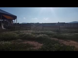 Грибной дождь в Байдарке