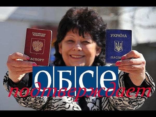 ОБСЕ подтвердили процесс паспортизации гражданства РФ на Донбассе