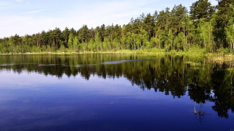 По просторам Беларуси На озеро Горное Ганцевический р н 2017