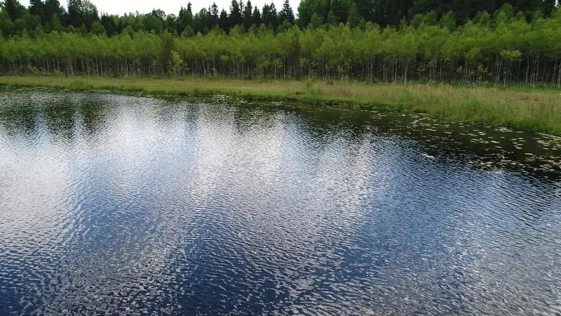 Дьяково озеро.