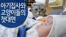 귀여운 아기와 고양이들의 첫만남 Cats' First Encounter with a Baby 赤ちゃんと猫たちの初の出会い SURI NOEL