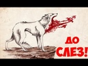 ДО СЛЕЗ. Комикс про ВОЛКА от которого ты ЗАПЛАЧЕШЬ