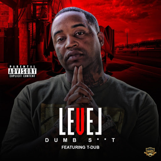 Level альбом Dumb S**t (feat. T-Dub)