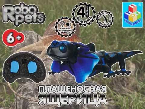 Robo Pets Lizard