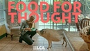 Food for Thought LCA's Award Winning PSA