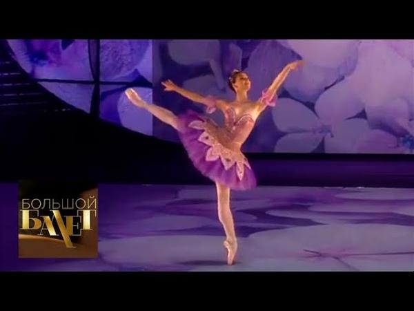 Радка Приходова Вариация феи Сирени из балета Спящая красавица Большой балет 2018