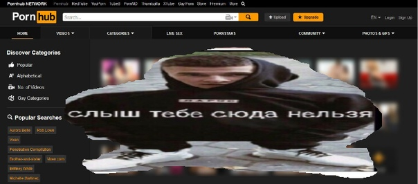 Фото №456244664 со страницы Vladislava Semenyuk