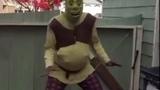 Shrek is a bad guy (original)