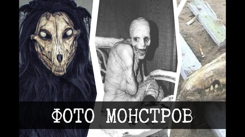 Фотографии монстров SCP