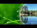 Video fc0dc69ad0b947b29278f1b6e8c0978a