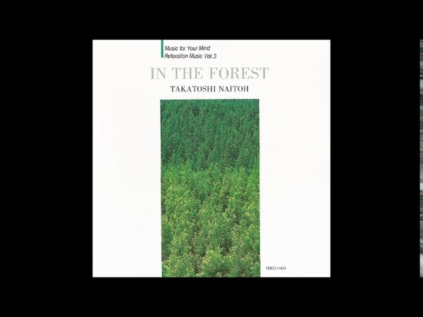 Takatoshi Naitoh (内藤孝敏) - In The Forest (1993) [Full Album]