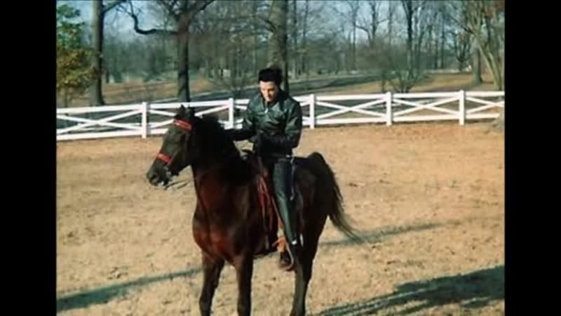 Elvis Presley Memories
