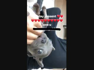 Demi via Instagram story (henrialexanderlevy)