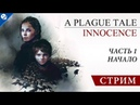 A Plague Tale: Innocence [ 1] - Начало [СТРИМ]