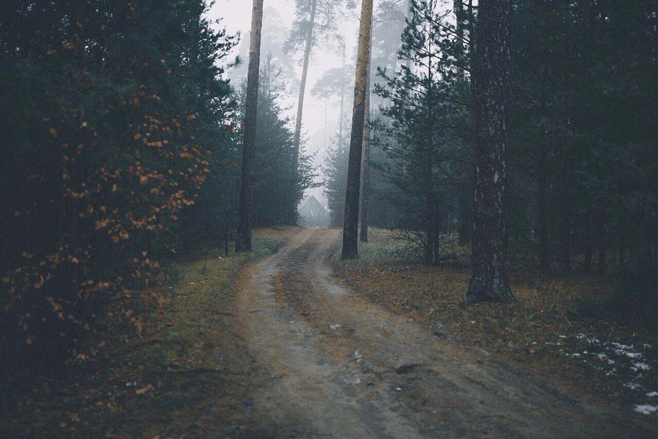 Роскошные пейзажи Норвегии - Страница 27 7HDxgQRtRww