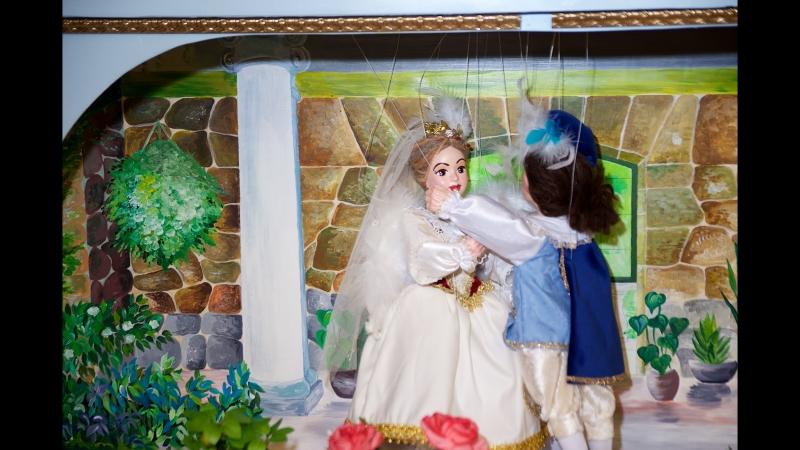 Лебединое озеро на теплоходе Ласточка на модном показе Успешный ребенок