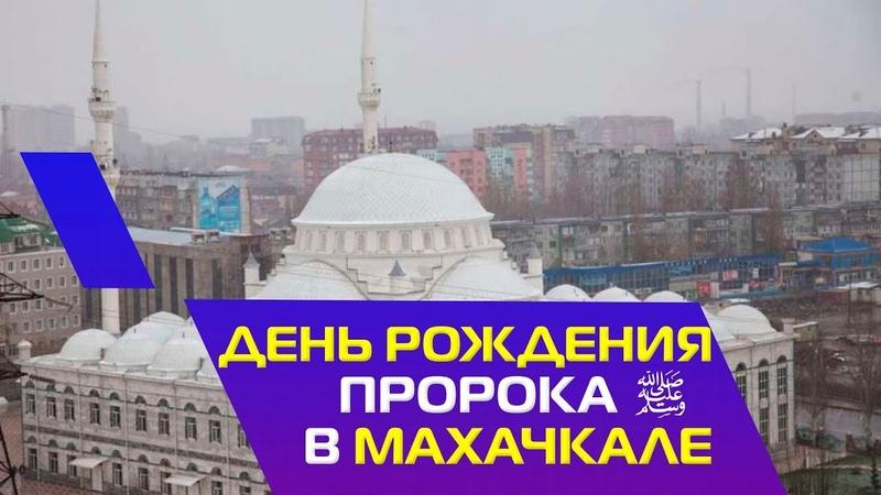 Тысячи мусульман пришли на мавлид в честь Пророка Мухаммада