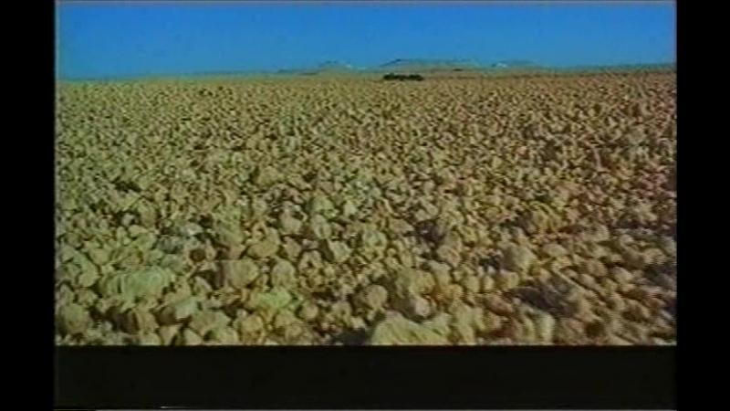 Биение | Pulse | Одержимая | Possessed | Шествие | Passage | Иран, короткометражный, 2001 | реж. Ширин Нешат