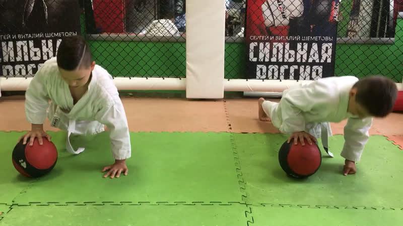 Отжимание с мячом Shembros Academy