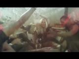 Ke$ha - Die Young.mp4