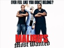 Malibu's Most Wanted Official Soundtrack