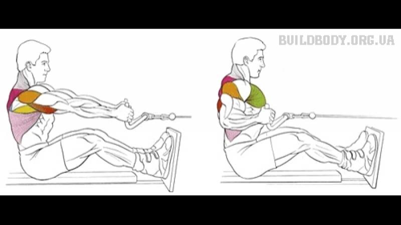 Упражнение на спину: Тяга нижнего блока.