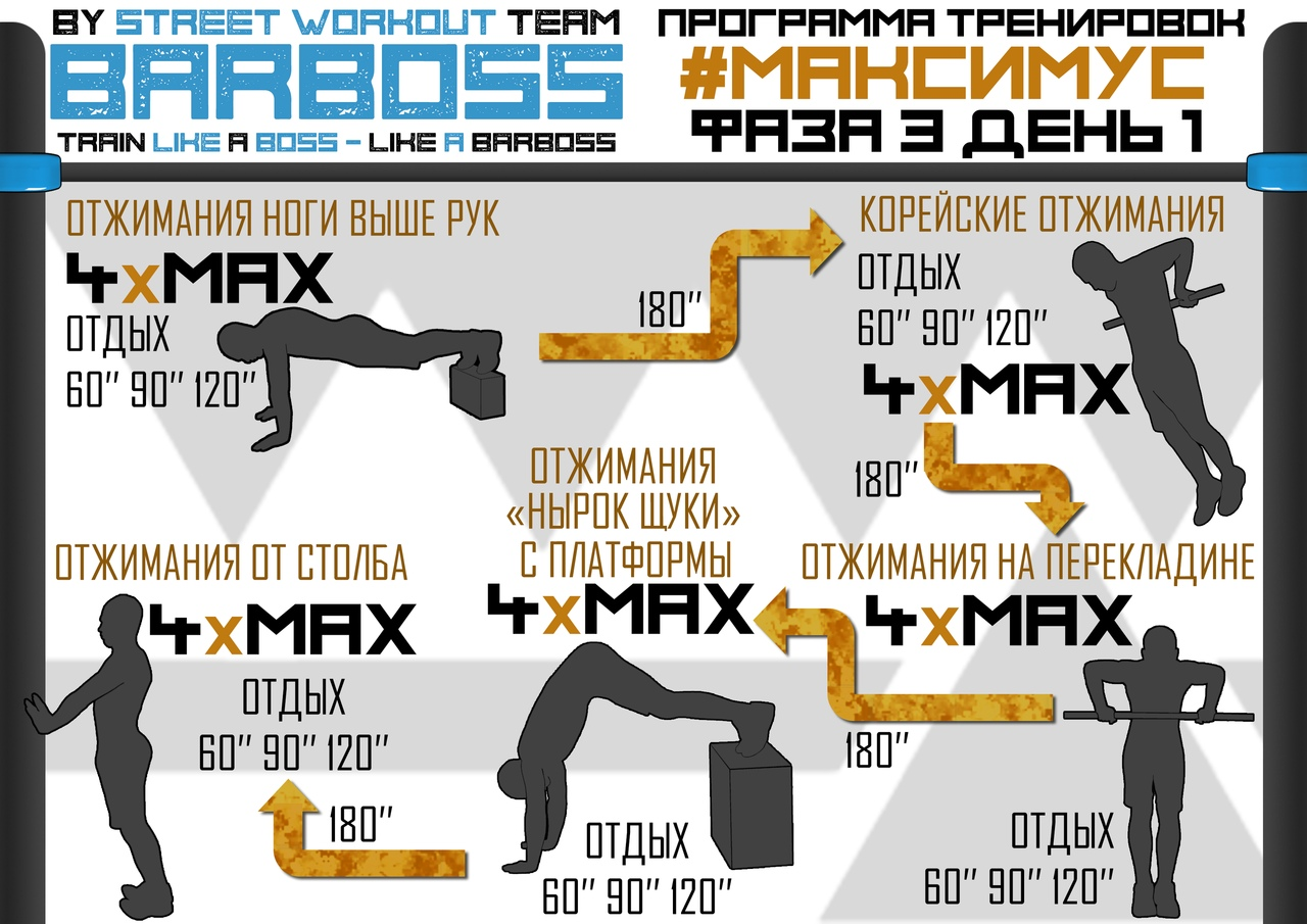 Программа тренировок #МАКСИМУС