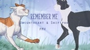 [WARRIORS] REMEMBER ME   BrightheartSwiftpaw PMV