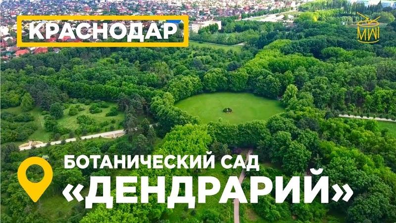 Парк Дендрарий Краснодар аэросъемка ботанический сад имени ИС Косенко вид сверху ВеснаHD MW_I