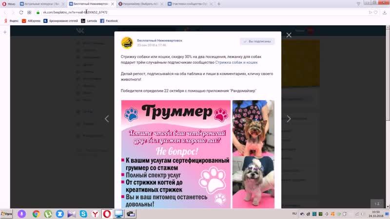24.10.2018 Стрижку собаки или кошки, скидку 30 на два посещения, лежанку для собак