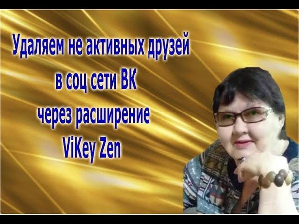 Расширение ViKey Zen, узнаем как установить и как удалять не активных друзей в ВК