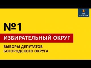 Обзор кандидатов. Избирательный округ №1
