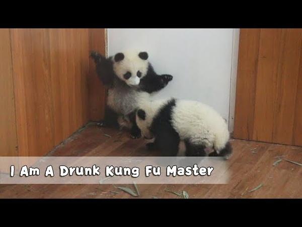 I Am A Drunk Kung Fu Master iPanda