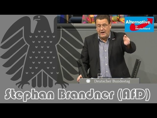 Stephan Brandner AfD an Grüne Schlecht gedacht und schlecht gemacht 14 12 2018