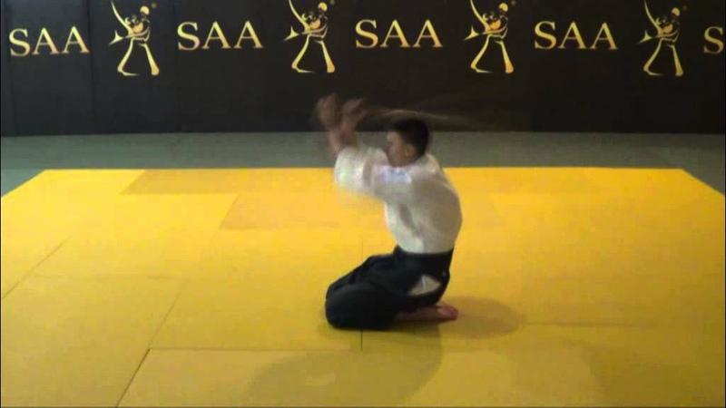 Aikido Kokyu Ho Mechanics Development Suburi in Seiza
