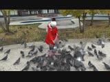 ДИЛЯРА и голуби.