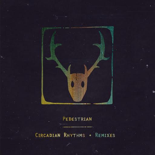 Pedestrian альбом Circadian Rhythms (Remix)