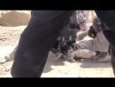 L'ambassadeur d'Israël au Danemark proteste contre cette vidéo publiée qui les expose.