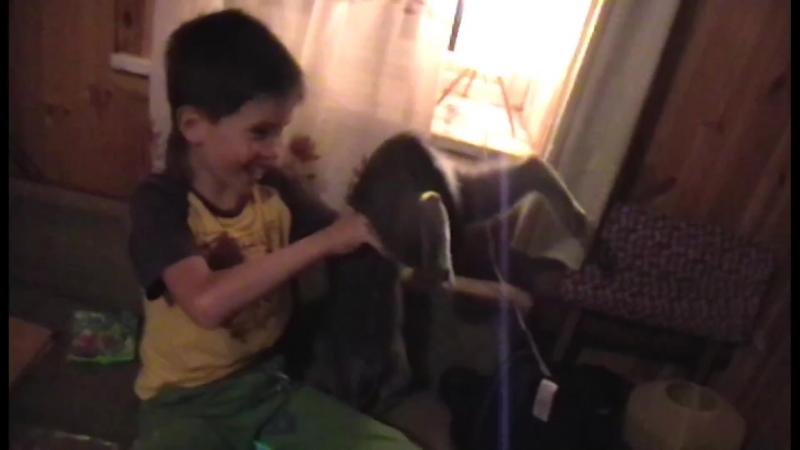 леонид показывает тараканов и бесоебит с кошкой на камеру