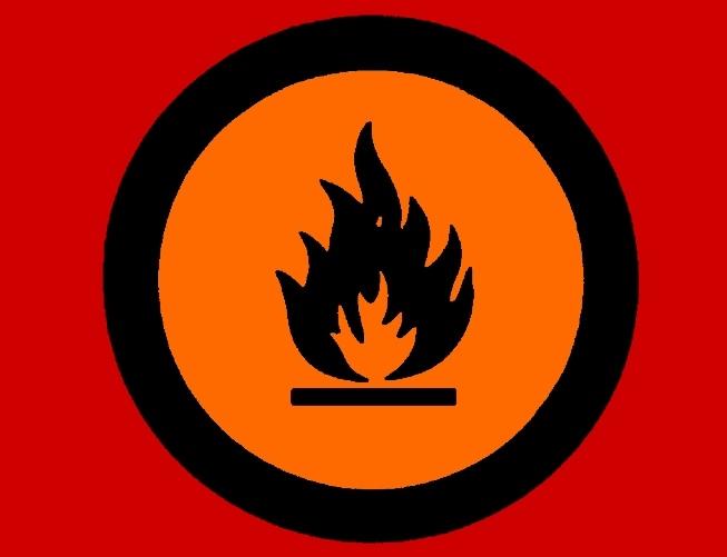 У ректора Воронежского госуниверситета сгорел дом