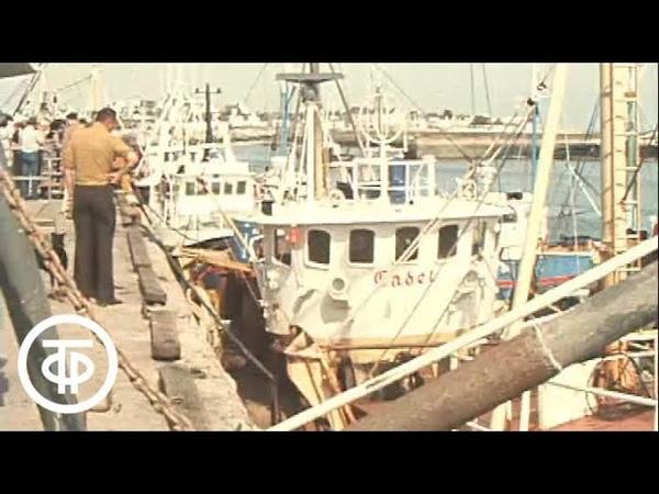 У рыбаков Бретани Время Эфир 03 07 1979 год
