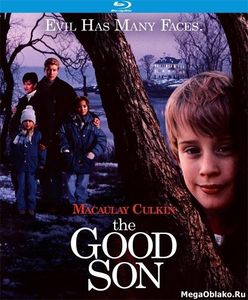 Добрый сынок / Хороший сын / The Good Son (1993/BDRip/HDRip)