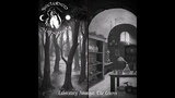Secluded Alchemist - Laboratory Amongst The Leaves (2018) (Dark Ambient, Dungeon Synth)
